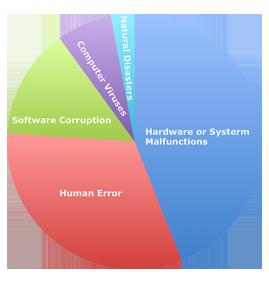 Percentage of the principal data loss causes