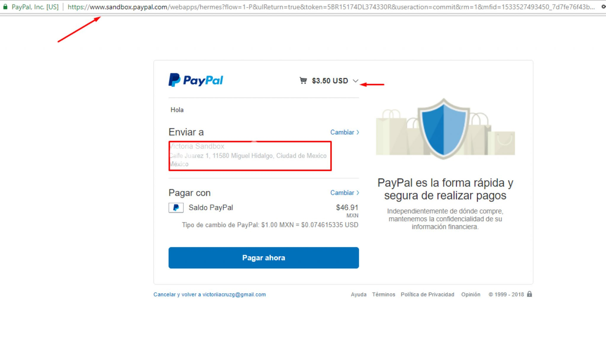 woocommerce-paypal-8